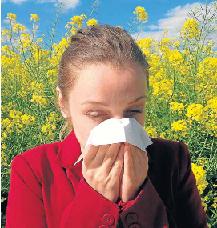 Alergia1005.png